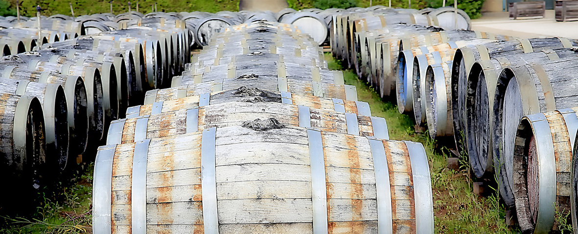 wine barrels western cape